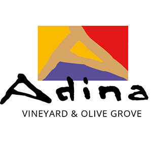 Adina Vineyard and Olive Grove, Hunter Valley